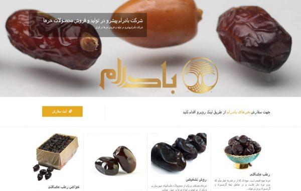 طراحی سایت بادرام